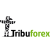 Tribuforex 